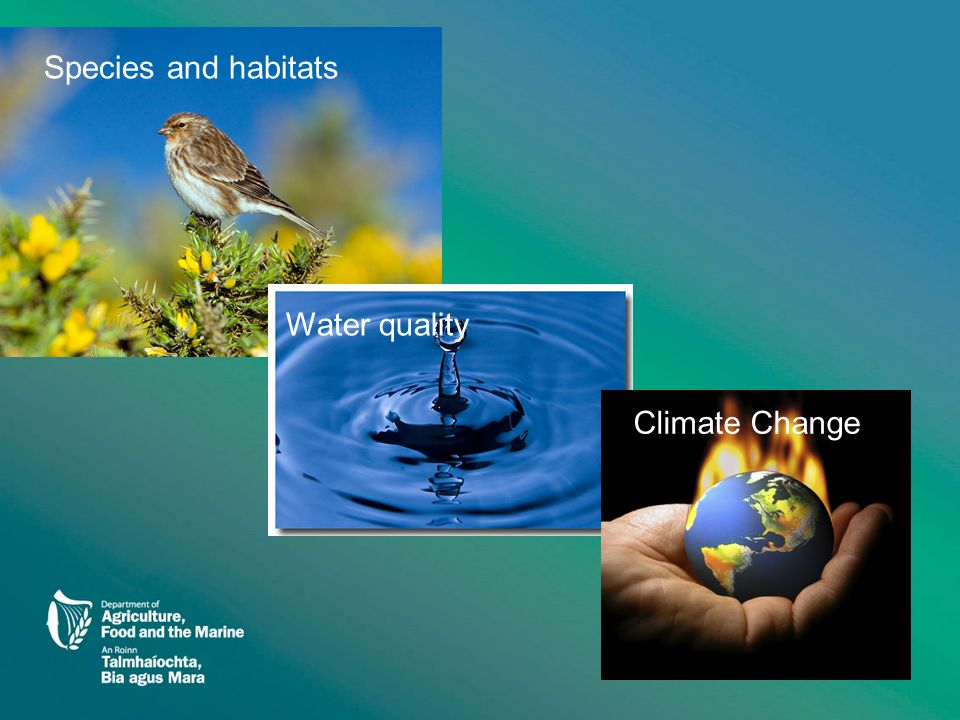 5 Species and habitats Water quality Climate Change