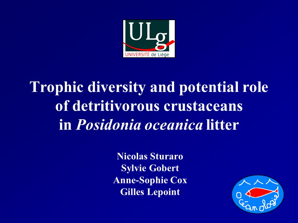 Trophic diversity and potential role of detritivorous crustaceans in Posidonia oceanica litter Nicolas Sturaro Sylvie Gobert Anne-Sophie Cox Gilles Lepoint