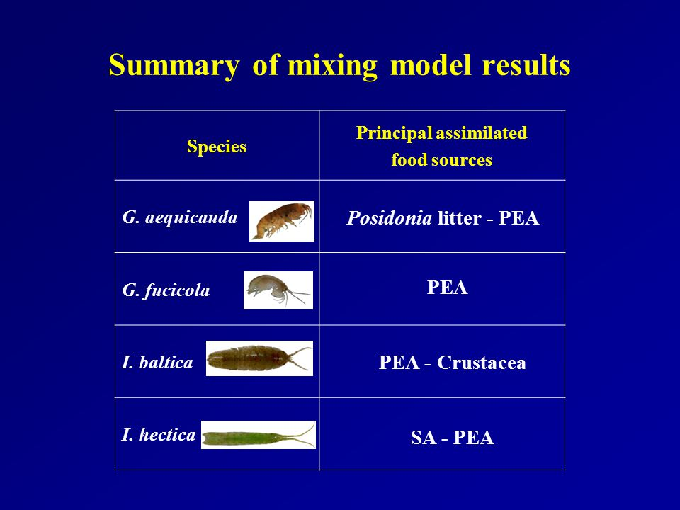 Summary of mixing model results Species Principal assimilated food sources G.