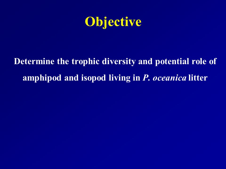 Objective Determine the trophic diversity and potential role of amphipod and isopod living in P. oceanica litter