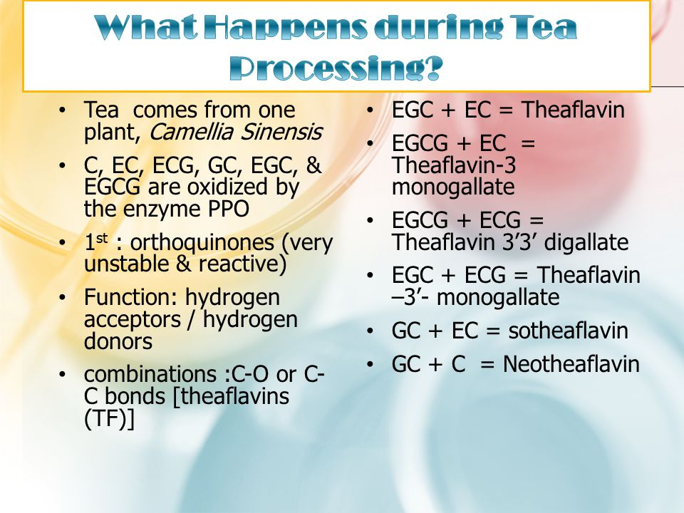 Tea comes from one plant, Camellia Sinensis C, EC, ECG, GC, EGC, & EGCG are oxidized by the enzyme PPO 1 st : orthoquinones (very unstable & reactive)