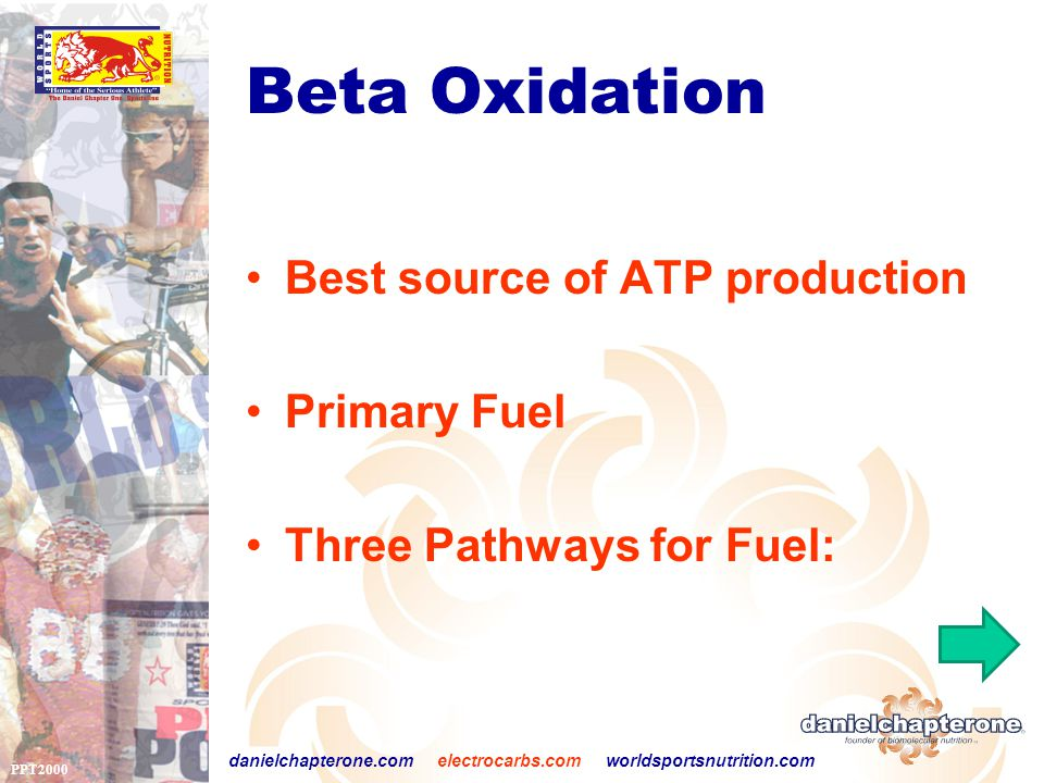 PPT2000 danielchapterone.com electrocarbs.com worldsportsnutrition.com Beta Oxidation Best source of ATP production Primary Fuel Three Pathways for Fuel: