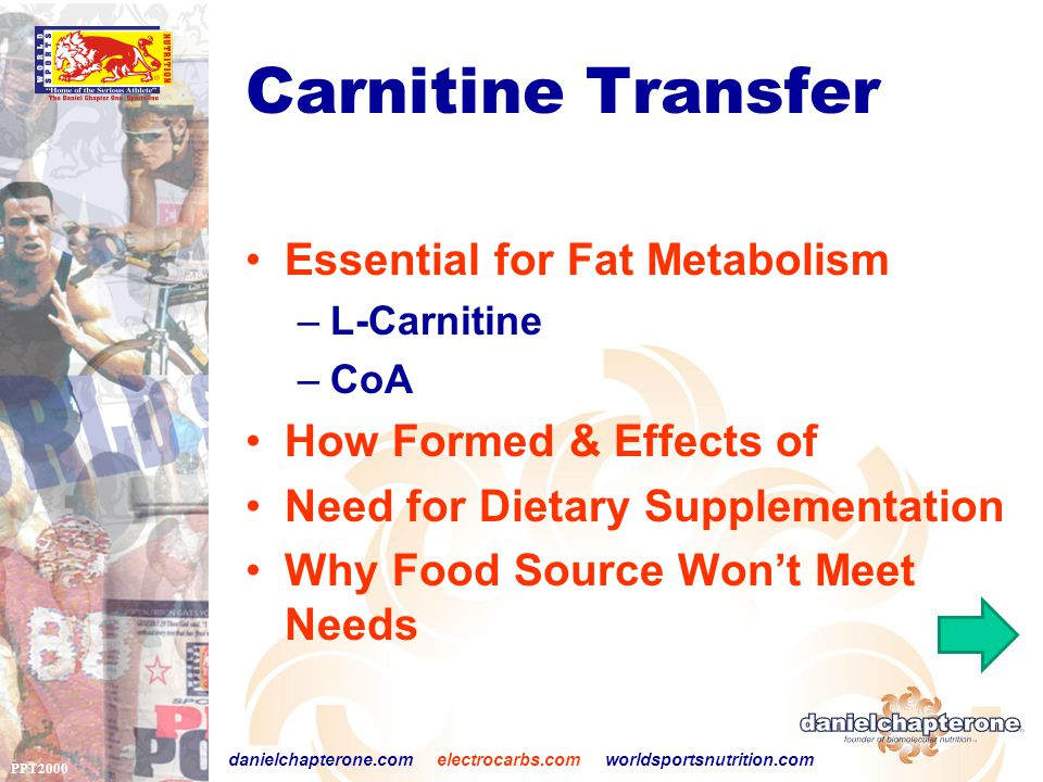 PPT2000 danielchapterone.com electrocarbs.com worldsportsnutrition.com Carnitine Transfer Essential for Fat Metabolism –L-Carnitine –CoA How Formed & Effects of Need for Dietary Supplementation Why Food Source Won't Meet Needs