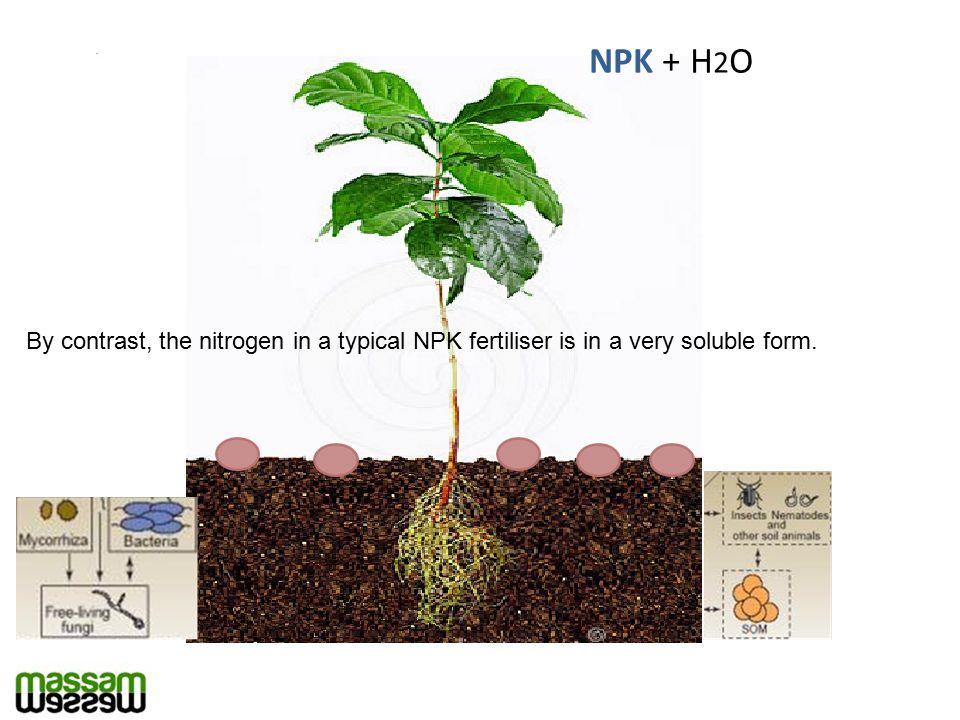 NPK + H 2 O