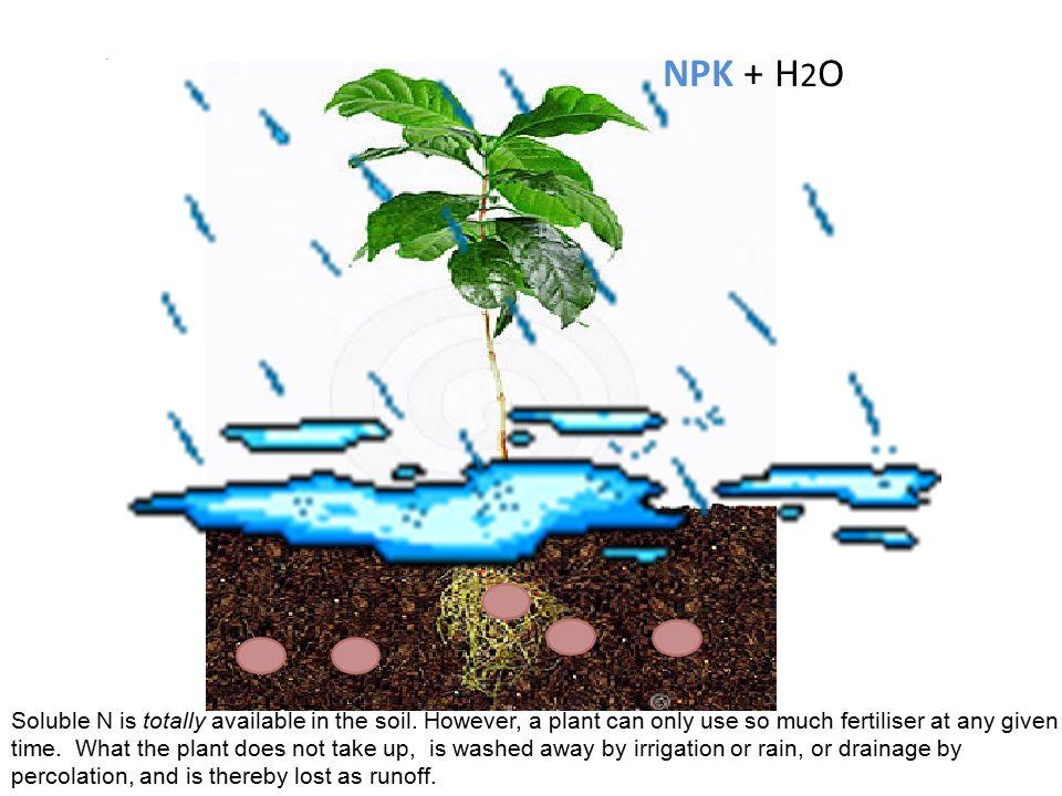 By contrast, the nitrogen in a typical NPK fertiliser is in a very soluble form.