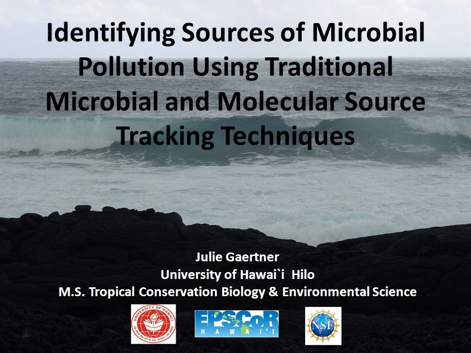 Identifying Sources of Microbial Pollution Using Traditional Microbial and Molecular Source Tracking Techniques Julie Gaertner University of Hawai`i Hilo M.S.