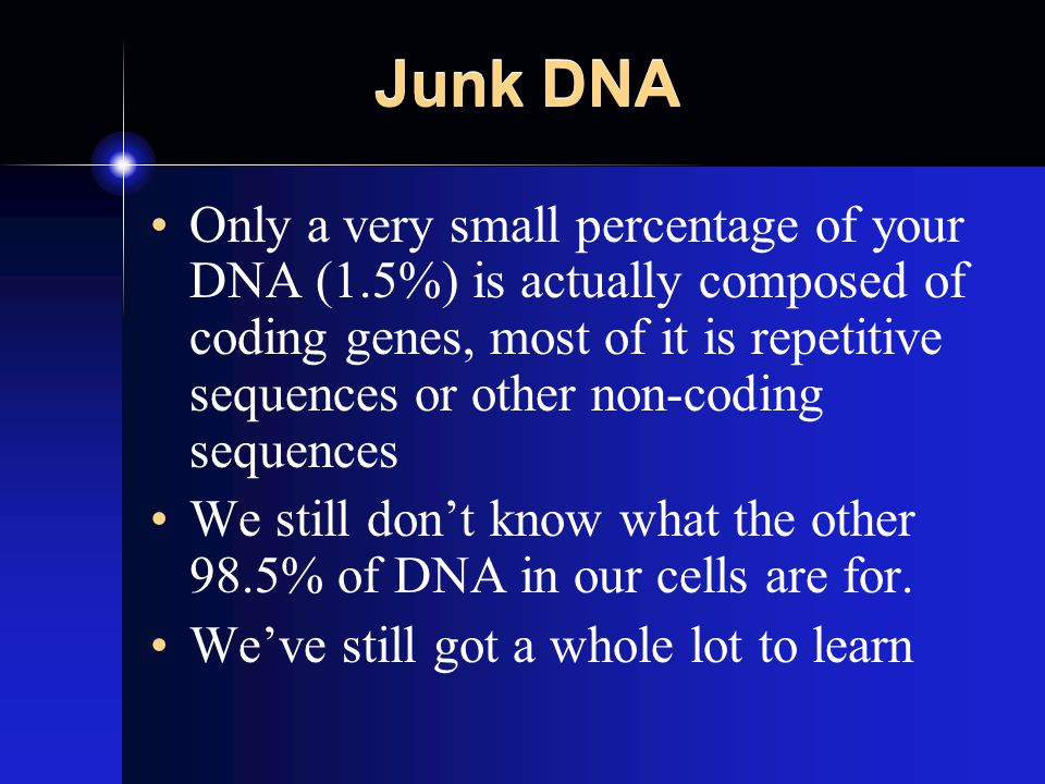 Junk DNA Only a very small percentage of your DNA (1.5%) is actually composed of coding genes, most of it is repetitive sequences or other non-coding sequences We still don't know what the other 98.5% of DNA in our cells are for.