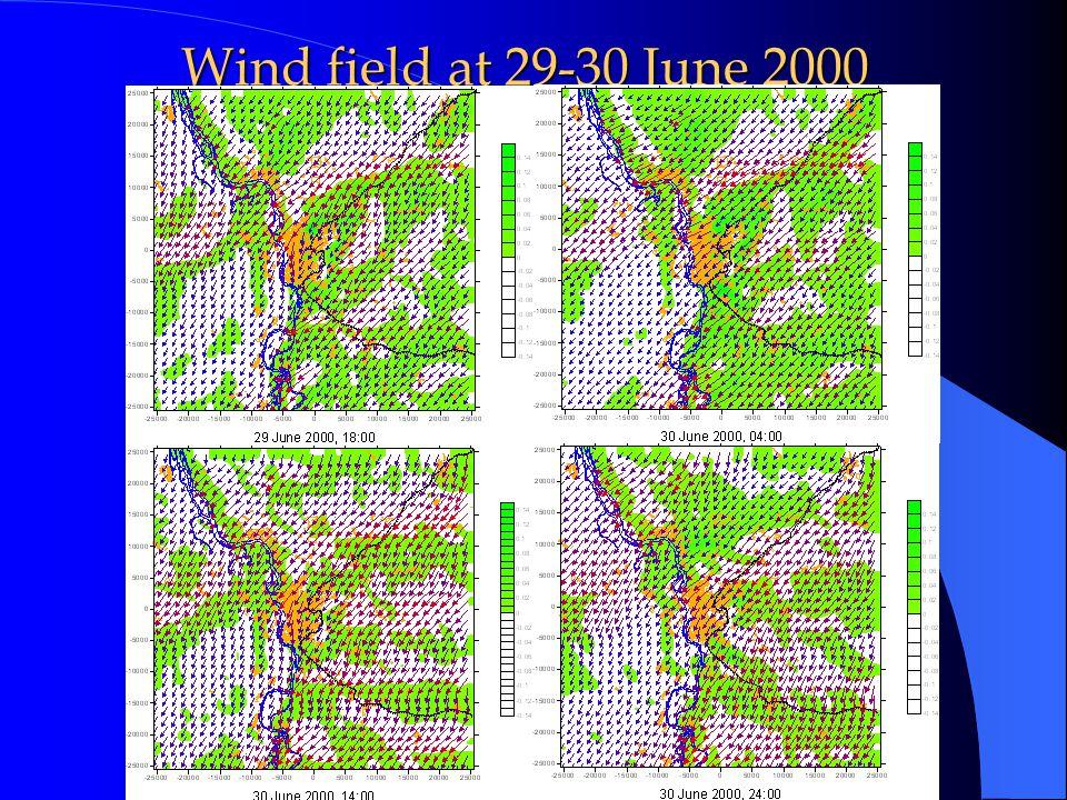 Wind field at 29-30 June 2000