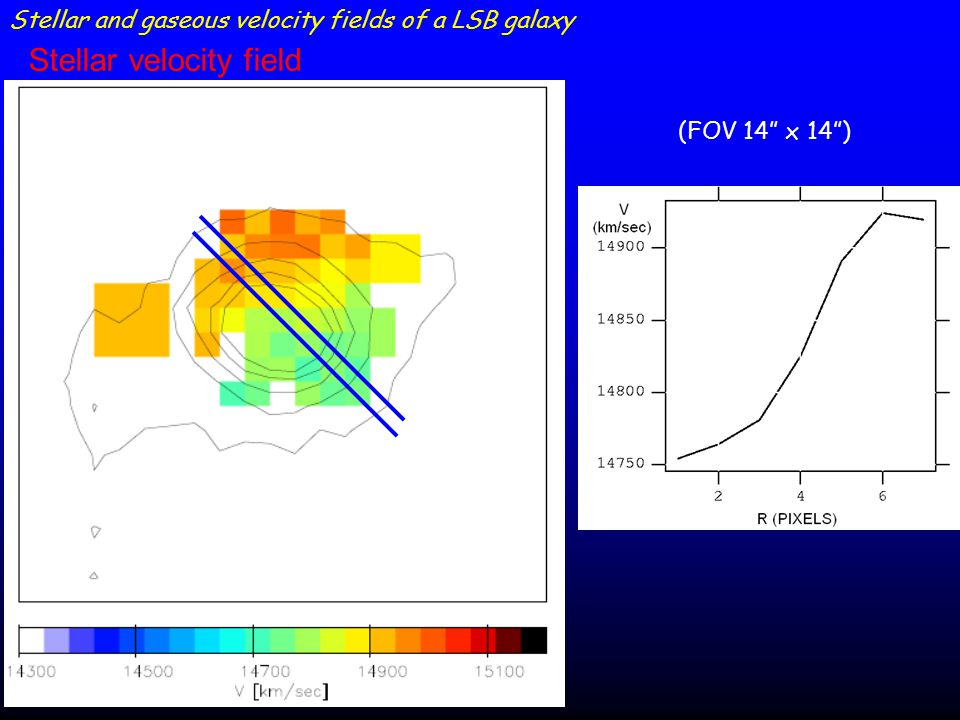 Stellar and gaseous velocity fields of a LSB galaxy (FOV 14 x 14 ) Stellar velocity field