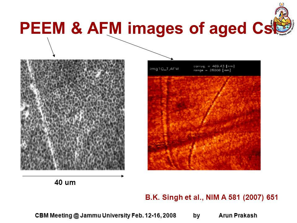 CBM Meeting @ Jammu University Feb. 12-16, 2008 by Arun Prakash PEEM & AFM images of aged CsI B.K.