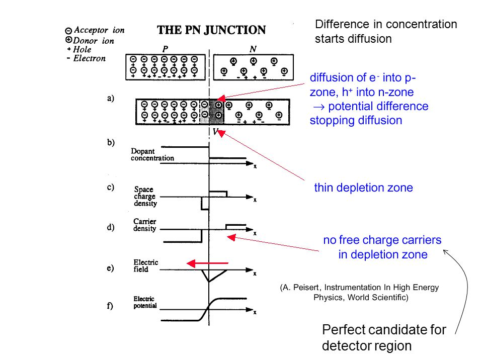 Difference in concentration starts diffusion Perfect candidate for detector region