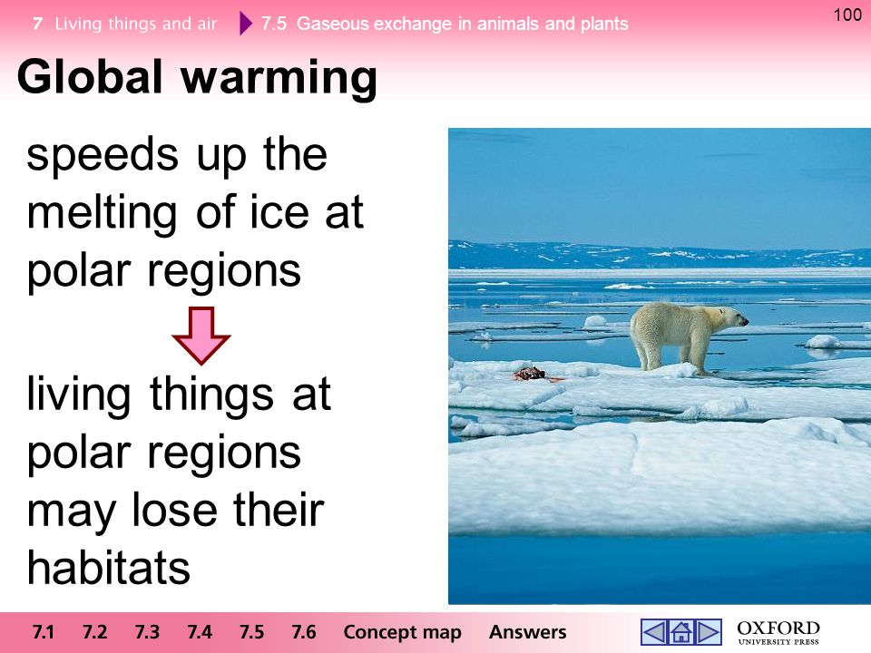 7.5 Gaseous exchange in animals and plants 100 Global warming speeds up the melting of ice at polar regions living things at polar regions may lose th
