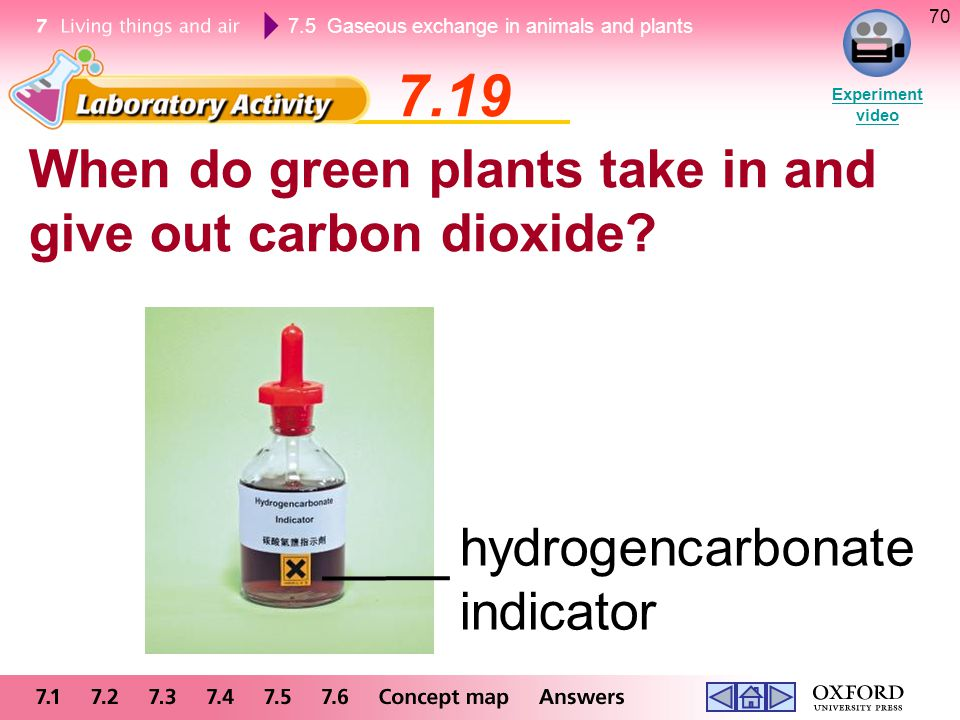 7.5 Gaseous exchange in animals and plants 70 When do green plants take in and give out carbon dioxide? 7.19 Experiment video hydrogencarbonate indica