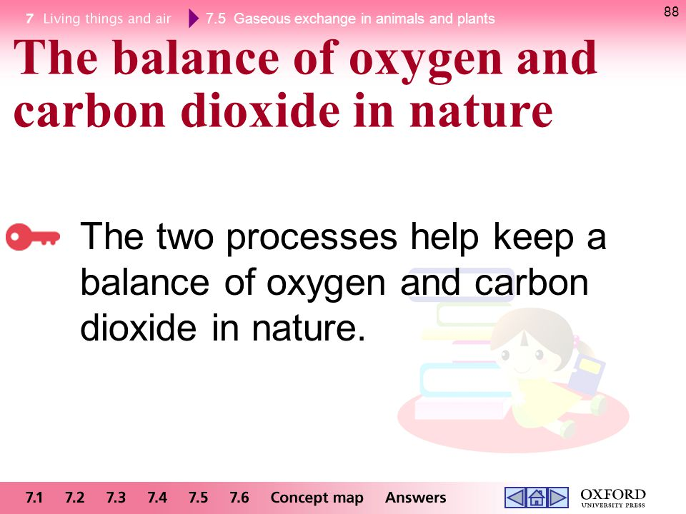 7.5 Gaseous exchange in animals and plants 88 The balance of oxygen and carbon dioxide in nature The two processes help keep a balance of oxygen and c