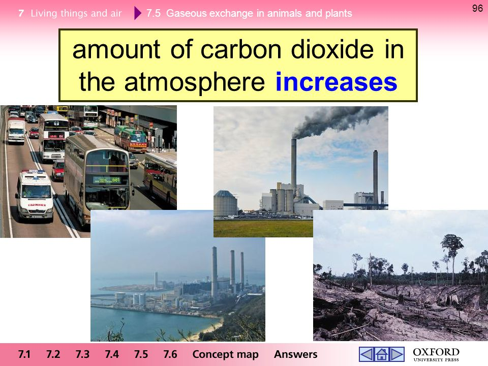 7.5 Gaseous exchange in animals and plants 96 amount of carbon dioxide in the atmosphere increases