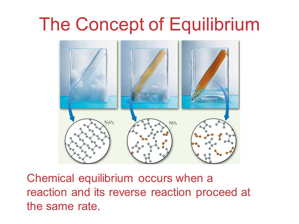 Equilibrium Can Be Reached from Either Direction It does not matter whether we start with N 2 and H 2 or whether we start with NH 3.