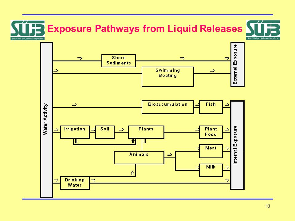 10 Exposure Pathways from Liquid Releases