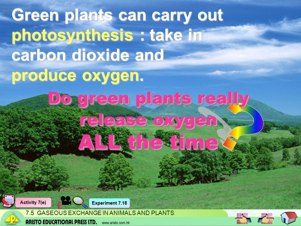 7.5 GASEOUS EXCHANGE IN ANIMALS AND PLANTS Green plants can carry out photosynthesis : take in carbon dioxide and produce oxygen.