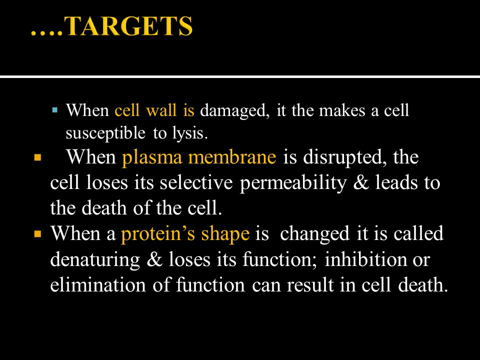  When cell wall is damaged, it the makes a cell susceptible to lysis.  When plasma membrane is disrupted, the cell loses its selective permeability