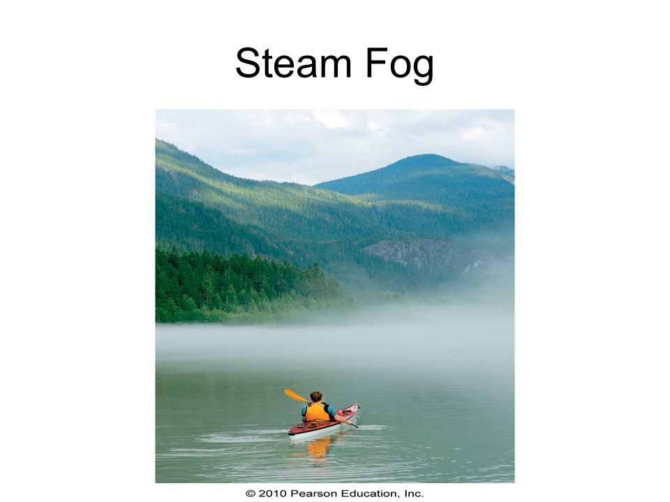 Steam Fog