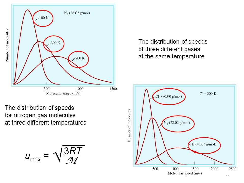 11 The distribution of speeds for nitrogen gas molecules at three different temperatures The distribution of speeds of three different gases at the same temperature u rms = 3RT M 