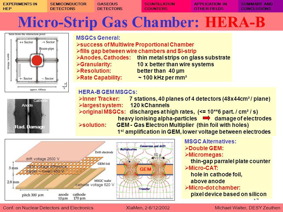 14 Micro-Strip Gas Chamber: HERA-B Conf.