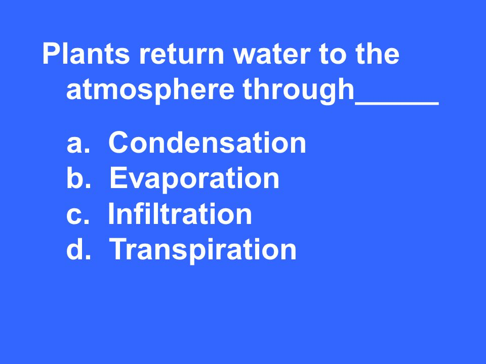 Plants return water to the atmosphere through_____ d. Transpiration