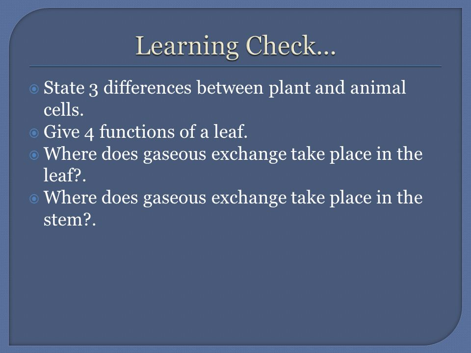  State 3 differences between plant and animal cells.