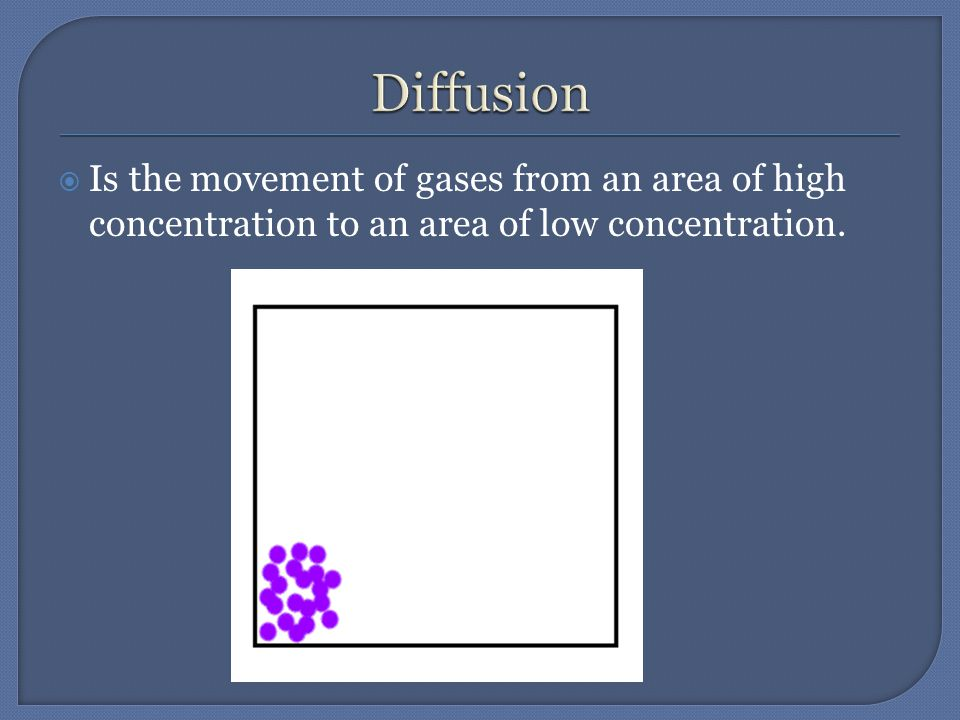  Is the movement of gases from an area of high concentration to an area of low concentration.