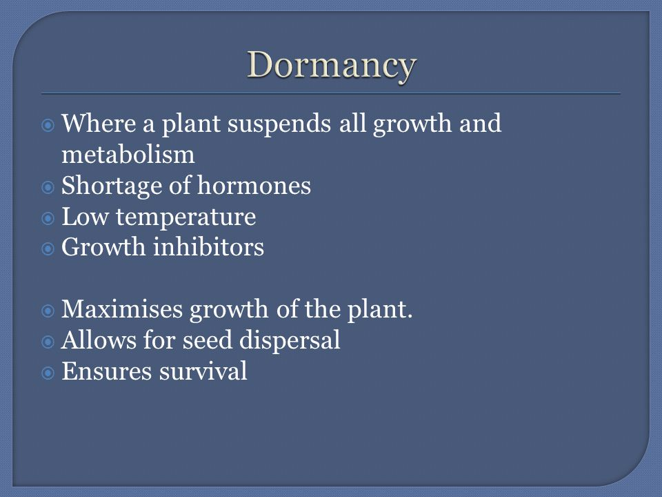  Where a plant suspends all growth and metabolism  Shortage of hormones  Low temperature  Growth inhibitors  Maximises growth of the plant.