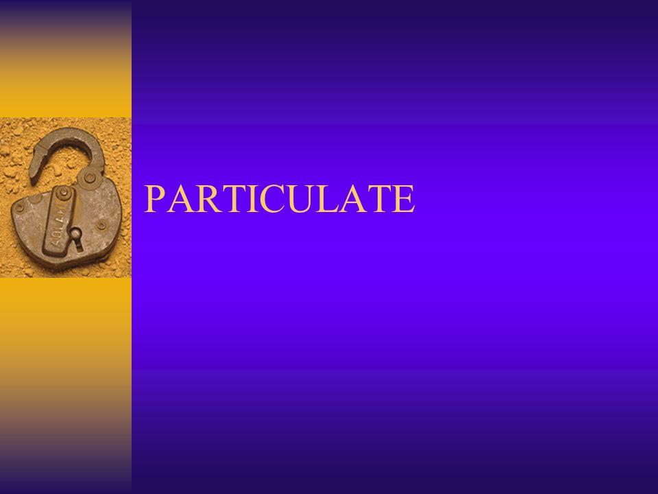 PARTICULATE