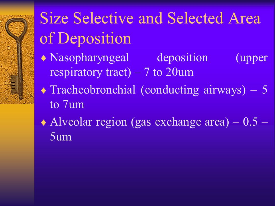 Size Selective and Selected Area of Deposition  Nasopharyngeal deposition (upper respiratory tract) – 7 to 20um  Tracheobronchial (conducting airways) – 5 to 7um  Alveolar region (gas exchange area) – 0.5 – 5um