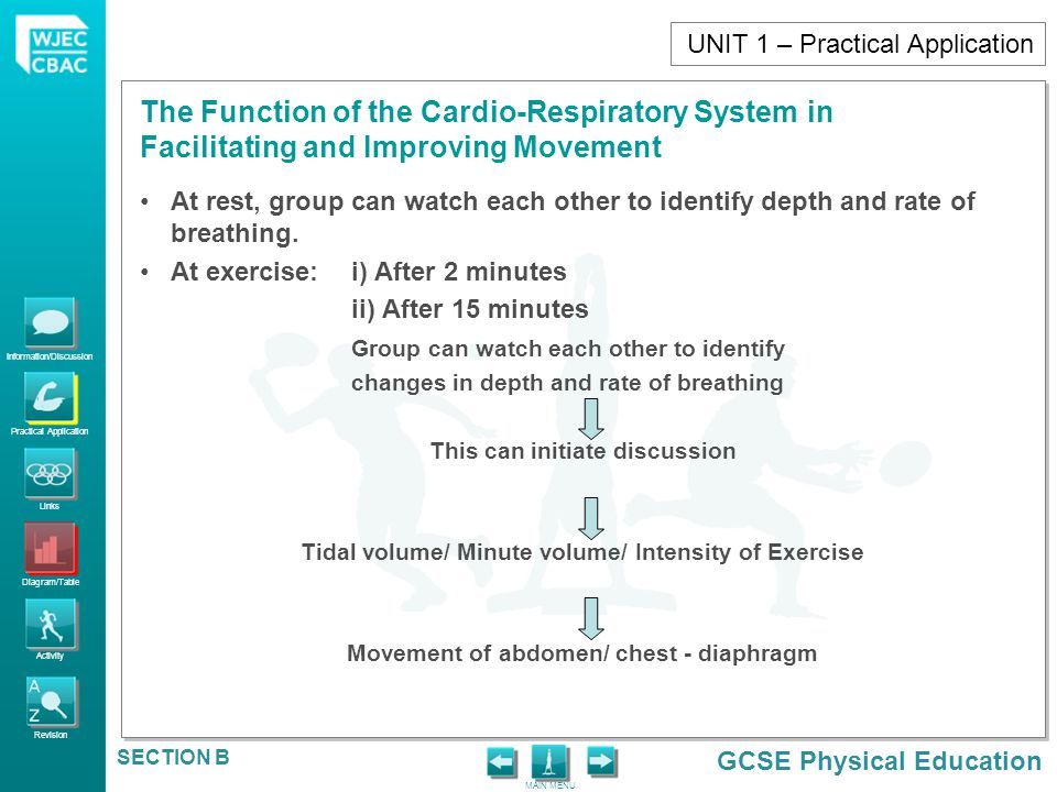 Information/Discussion Practical Application Links Diagram/Table Activity Revision GCSE Physical Education The Function of the Cardio-Respiratory Syst