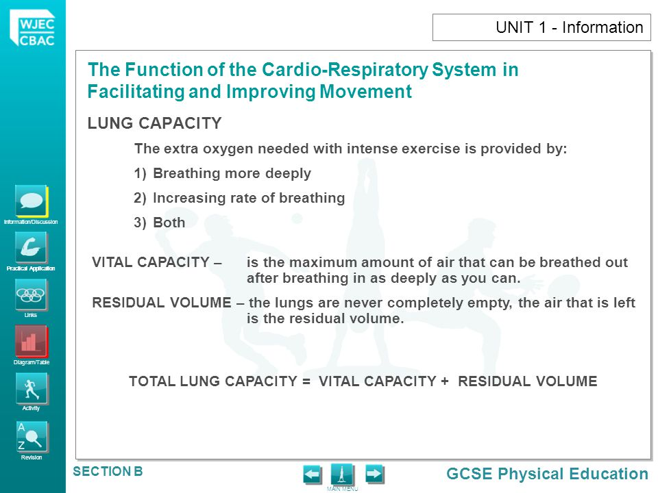 Information/Discussion Practical Application Links Diagram/Table Activity Revision GCSE Physical Education The Function of the Cardio-Respiratory System in Facilitating and Improving Movement MAIN MENU SECTION B UNIT 1 - Information LUNG VOLUMES Information/Discussion Practical Application Under normal resting conditions, we breathe approximately 16 times per minute – taking in 0.5 litres of air (TIDAL VOLUME) During vigorous exercise, the breathing rate may exceed 40 breaths per minute – taking in 2.2 litres of air.