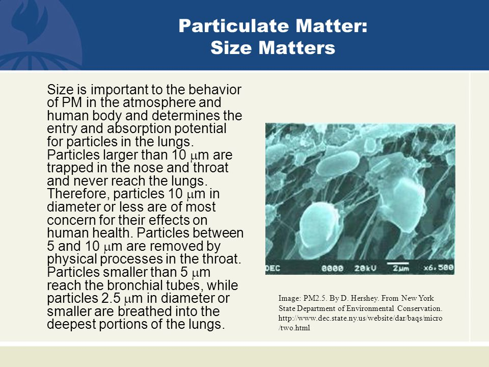 Size is important to the behavior of PM in the atmosphere and human body and determines the entry and absorption potential for particles in the lungs.