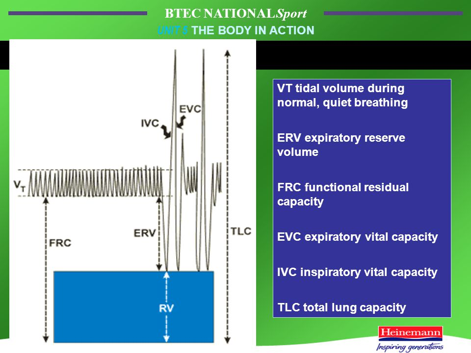 BTEC NATIONAL Sport UNIT 5 THE BODY IN ACTION VT tidal volume during normal, quiet breathing ERV expiratory reserve volume FRC functional residual capacity EVC expiratory vital capacity IVC inspiratory vital capacity TLC total lung capacity