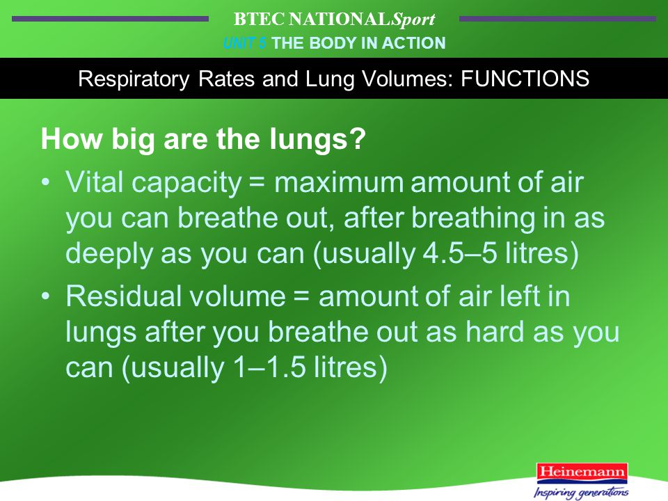 BTEC NATIONAL Sport UNIT 5 THE BODY IN ACTION Respiratory Rates and Lung Volumes: FUNCTIONS How big are the lungs.