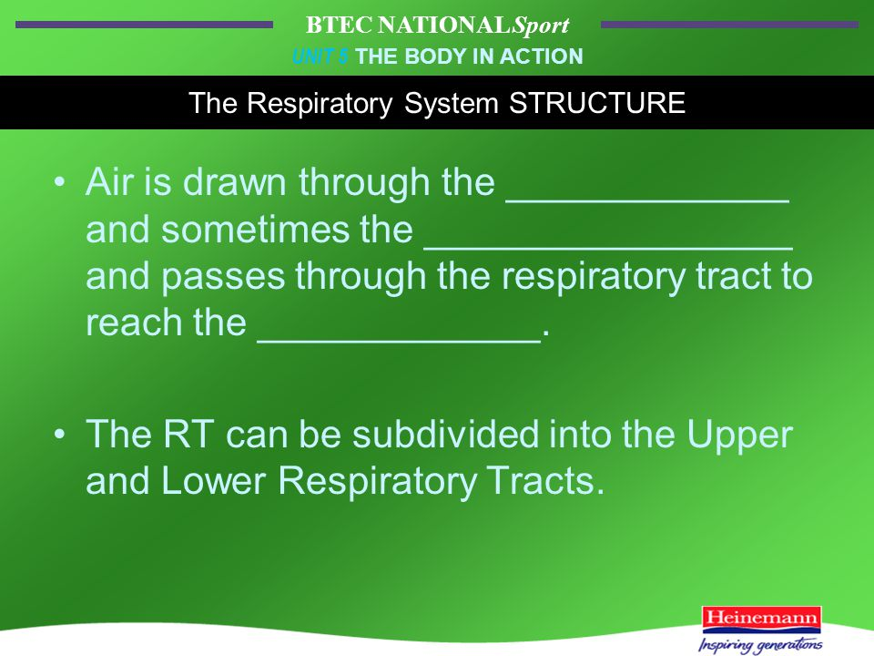 BTEC NATIONAL Sport UNIT 5 THE BODY IN ACTION The Respiratory System STRUCTURE Air is drawn through the _____________ and sometimes the _________________ and passes through the respiratory tract to reach the _____________.