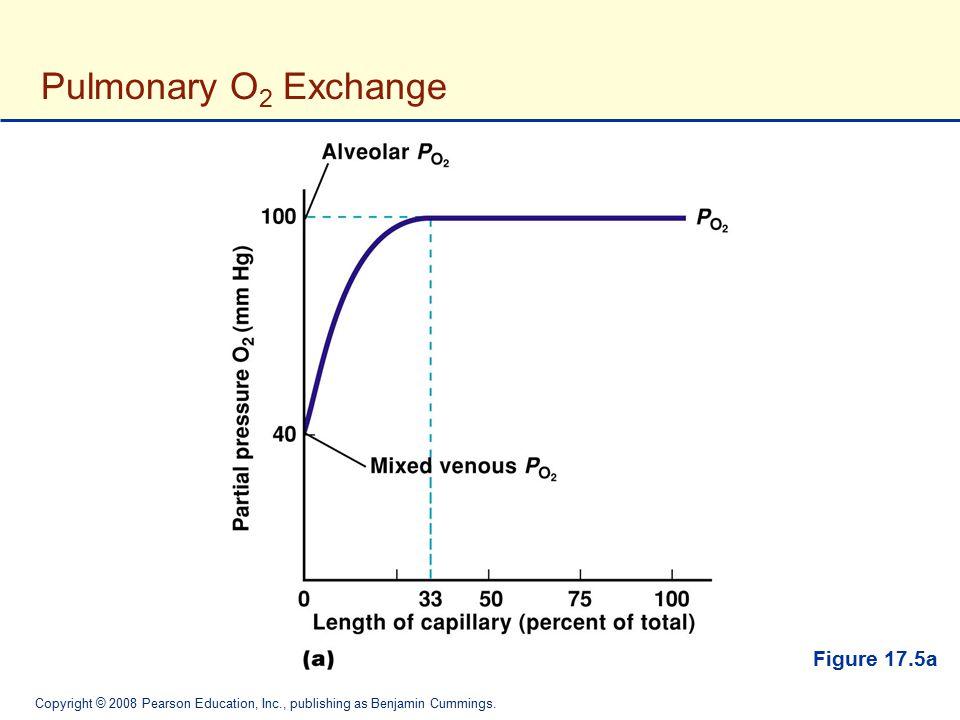 Copyright © 2008 Pearson Education, Inc., publishing as Benjamin Cummings. Pulmonary O 2 Exchange Figure 17.5a