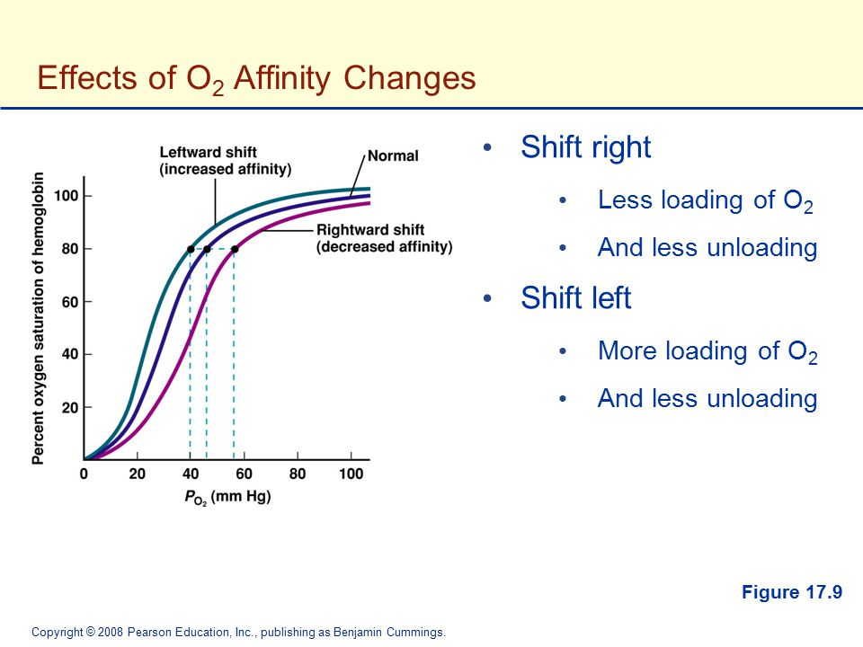 Copyright © 2008 Pearson Education, Inc., publishing as Benjamin Cummings. Figure 17.9 Effects of O 2 Affinity Changes Shift right Less loading of O 2