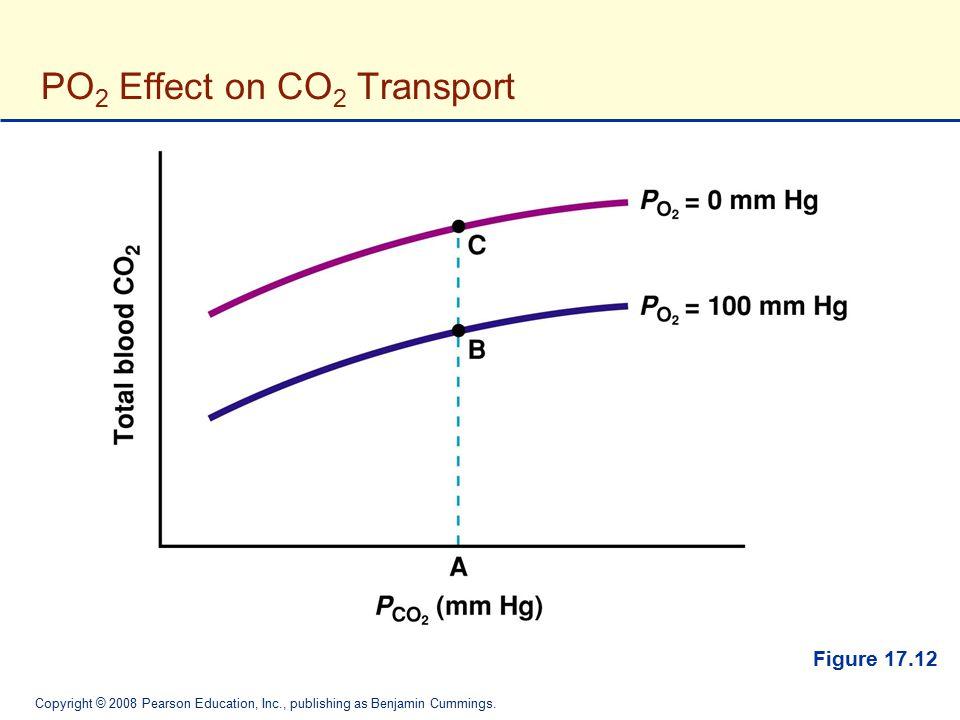 Copyright © 2008 Pearson Education, Inc., publishing as Benjamin Cummings. PO 2 Effect on CO 2 Transport Figure 17.12