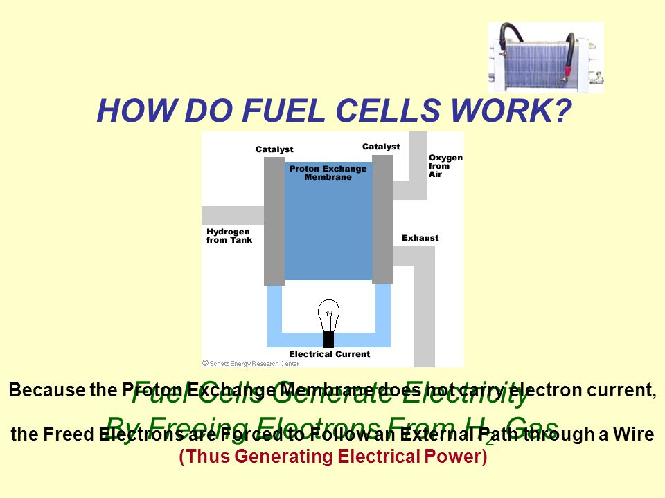 Fuel Cells Generate Electricity By Freeing Electrons From H 2 Gas Because the Proton Exchange Membrane does not carry electron current, the Freed Electrons are Forced to Follow an External Path through a Wire (Thus Generating Electrical Power)