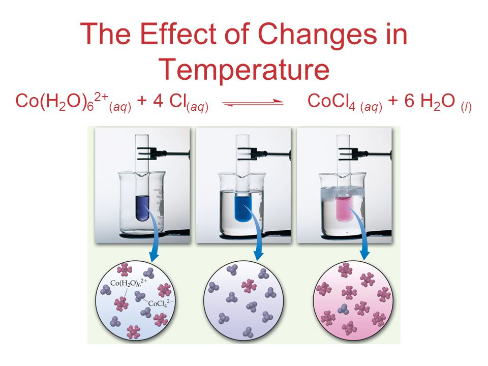 The Effect of Changes in Temperature Co(H 2 O) 6 2+ (aq) + 4 Cl (aq) CoCl 4 (aq) + 6 H 2 O (l)
