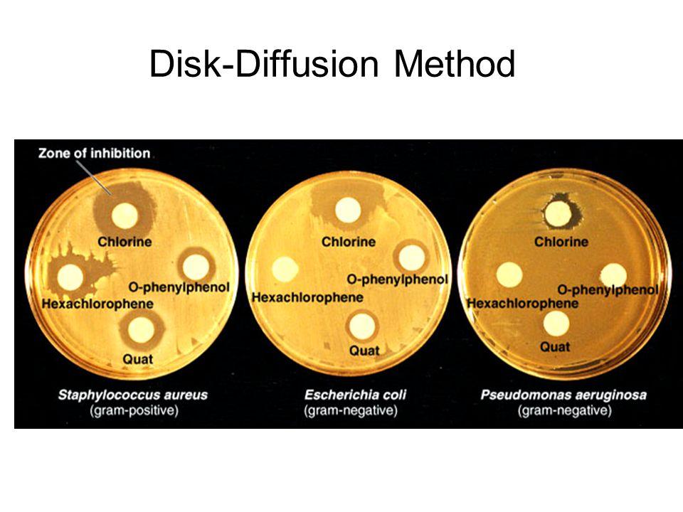 Disk-Diffusion Method