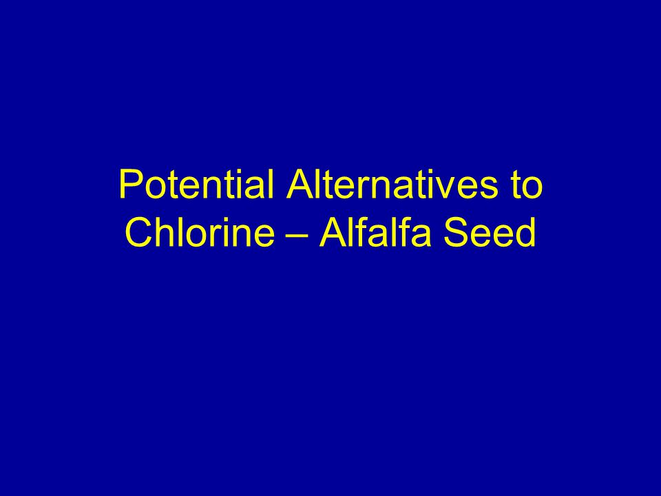 Potential Alternatives to Chlorine – Alfalfa Seed