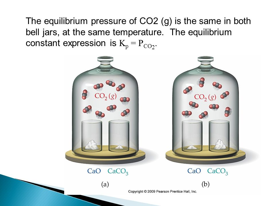 The equilibrium pressure of CO2 (g) is the same in both bell jars, at the same temperature.