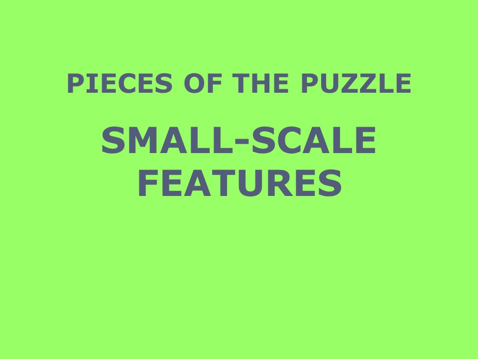 PIECES OF THE PUZZLE SMALL-SCALE FEATURES
