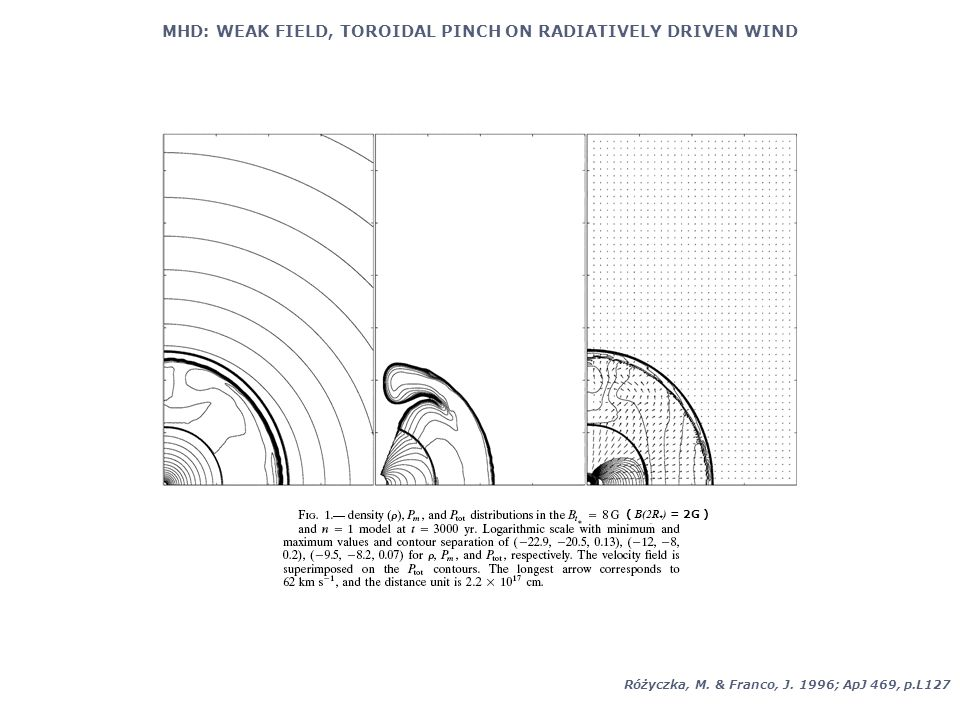 MHD: WEAK FIELD, TOROIDAL PINCH ON RADIATIVELY DRIVEN WIND Różyczka, M.
