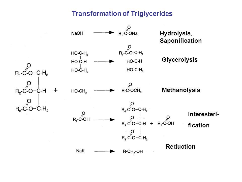 Hydrolysis, Saponification Glycerolysis Methanolysis Interesteri- fication Reduction Transformation of Triglycerides