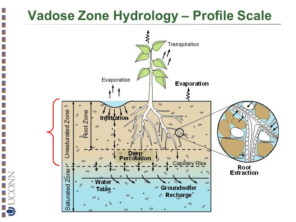 Vadose Zone Hydrology – Profile Scale